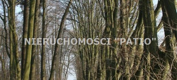 Działka na sprzedaż 93500 m² Słupecki Zagórów Łukom - zdjęcie 3