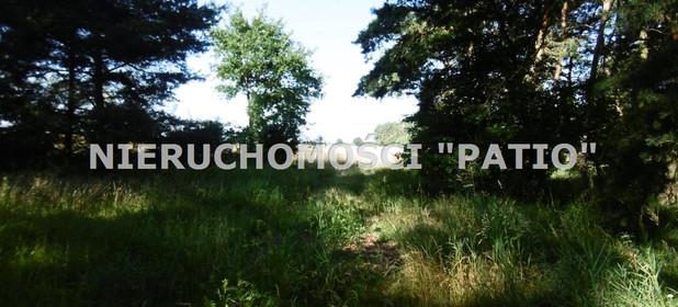 Działka na sprzedaż 4700 m² Poznański Kórnik Kórnik, Radzewo Dworzyska - zdjęcie 3
