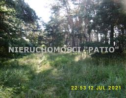 Morizon WP ogłoszenia | Działka na sprzedaż, Kórnik Dworzyska, 4700 m² | 0220