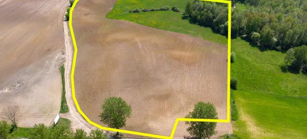 Działka na sprzedaż 65300 m² Ełcki Ełk Przytuły - zdjęcie 3