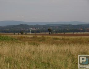 Działka na sprzedaż, Wojcieszyce, 20900 m²