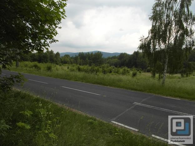 Grunt na sprzedaż, Piechowice, 15000 m²   Morizon.pl   1440