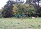 Działka na sprzedaż, Kadłub, 3000 m² | Morizon.pl | 0803 nr5