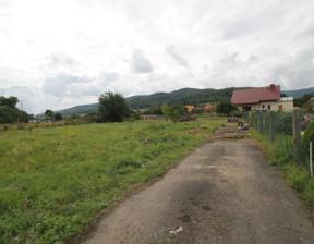 Działka na sprzedaż, Pieszyce, 2624 m²