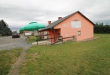 Lokal gastronomiczny na sprzedaż, Białobrzezie, 121 m²