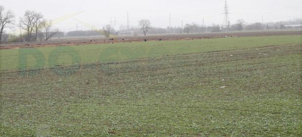 Działka na sprzedaż 14000 m² Dzierżoniowski (pow.) Bielawa - zdjęcie 2