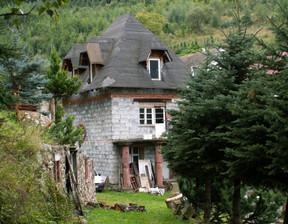 Dom na sprzedaż, Pieszyce Lasocin, 340 m²