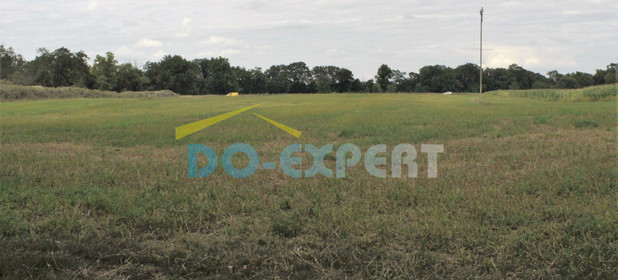 Działka na sprzedaż 17600 m² Wrocław Psie Pole - zdjęcie 1