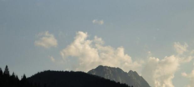 Zdjęcie 1