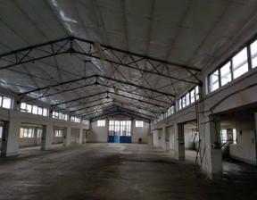 Hala do wynajęcia, Środa Wielkopolska, 1080 m²