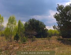 Działka na sprzedaż, Ostrybór, 3000 m²
