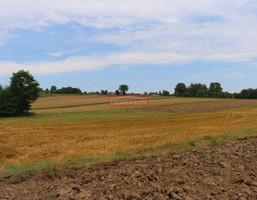 Morizon WP ogłoszenia | Działka na sprzedaż, Zabłocie, 2800 m² | 3667