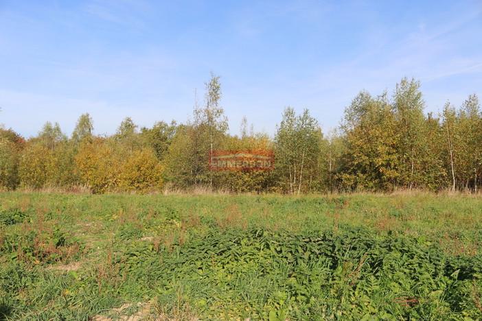 Działka na sprzedaż, Biskupice, 3000 m² | Morizon.pl | 2916