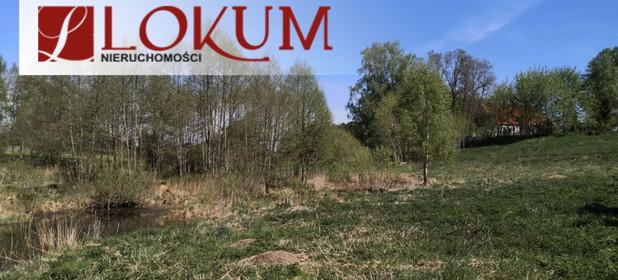 Działka na sprzedaż 59600 m² Zblewo Biały Bukowiec - zdjęcie 3
