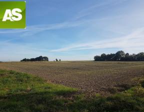 Działka na sprzedaż, Sieroty Chwoszcz, 715 m²