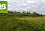 Działka na sprzedaż, Rzeczyce Wiejska, 9000 m² | Morizon.pl | 7169 nr5