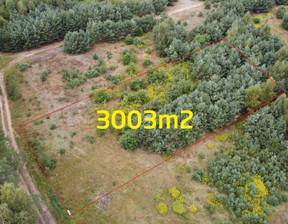 Działka na sprzedaż, Jarużyn, 3001 m²
