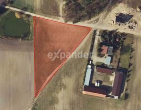 Działka na sprzedaż, Potrzanowo, 4800 m²
