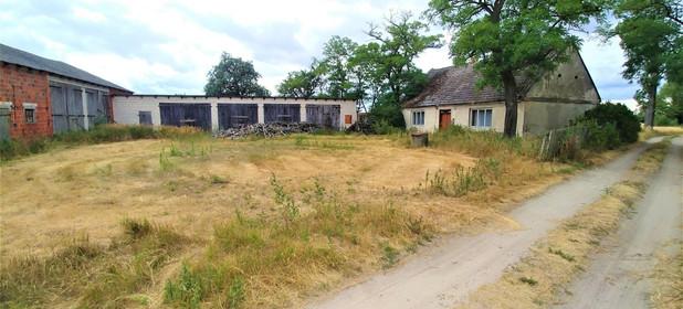 Działka na sprzedaż 118200 m² Koniński (Pow.) Rzgów (Gm.) Babia - zdjęcie 1