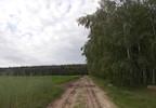 Działka na sprzedaż, Zajączkowo, 14500 m² | Morizon.pl | 1561 nr15