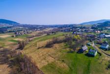 Działka na sprzedaż, Mszalnica, 11520 m²