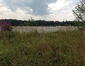 Działka na sprzedaż, Rabka-Zdrój, 8725 m²