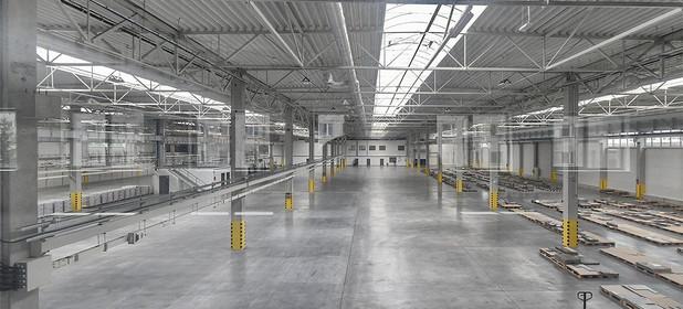 Magazyn, hala do wynajęcia 2774 m² Kielce M. Kielce - zdjęcie 1