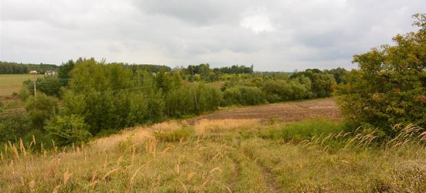 Działka na sprzedaż 24300 m² Kielecki Morawica Obice Wspólna - zdjęcie 3