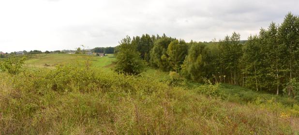 Działka na sprzedaż 24300 m² Kielecki Morawica Obice Wspólna - zdjęcie 2