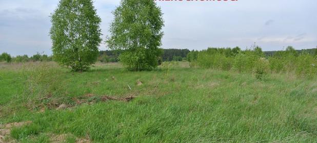 Działka na sprzedaż 914 m² Kielecki Piekoszów Szczukowice - zdjęcie 3