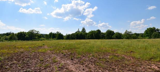 Działka na sprzedaż 10700 m² Skarżyski Łączna Zalezianka - zdjęcie 1