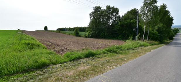 Działka na sprzedaż 8300 m² Kielecki Strawczyn Oblęgór - zdjęcie 3