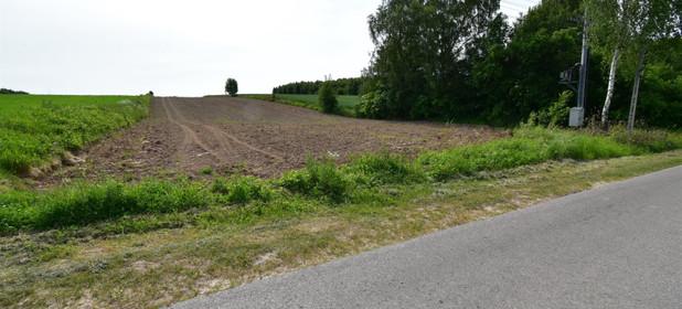 Działka na sprzedaż 8300 m² Kielecki Strawczyn Oblęgór - zdjęcie 1