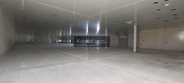Fabryka, zakład na sprzedaż 2500 m² Namysłowski (pow.) Namysłów (gm.) - zdjęcie 3