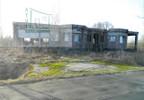 Działka na sprzedaż, Młynary, 2300 m² | Morizon.pl | 9548 nr13