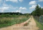 Działka na sprzedaż, Pniewy, 18000 m² | Morizon.pl | 2353 nr10