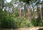 Działka na sprzedaż, Pniewy, 18000 m² | Morizon.pl | 2353 nr2