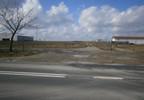 Przemysłowy na sprzedaż, Złotów Blękwit, 2594 m² | Morizon.pl | 8353 nr15