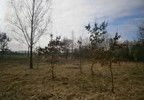 Działka na sprzedaż, Czyżkowo, 3002 m² | Morizon.pl | 0494 nr12
