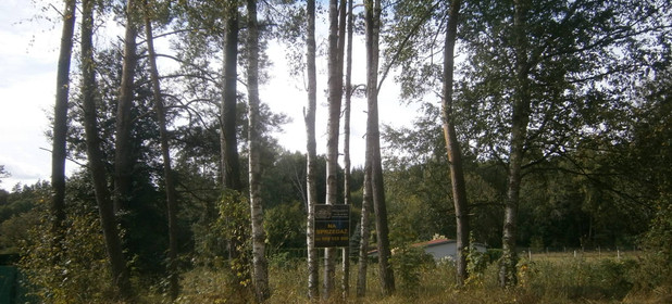 Działka na sprzedaż 1486 m² Złotowski (Pow.) Złotów (Gm.) Radawnica - zdjęcie 2
