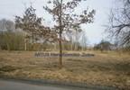 Działka na sprzedaż, Czyżkowo, 3002 m² | Morizon.pl | 0494 nr2