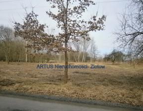 Działka na sprzedaż, Czyżkowo, 3002 m²