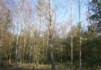 Działka na sprzedaż, Stara Wiśniewka, 55661 m²   Morizon.pl   0745 nr10