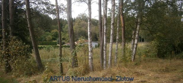 Działka na sprzedaż 1486 m² Złotowski (Pow.) Złotów (Gm.) Radawnica - zdjęcie 1