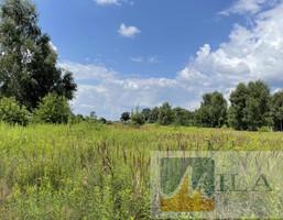 Morizon WP ogłoszenia | Działka na sprzedaż, Cholerzyn, 5311 m² | 4166