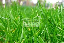 Działka na sprzedaż, Michałówek, 8000 m²