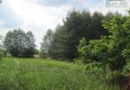 Działka na sprzedaż, Kiczyce, 14517 m² | Morizon.pl | 7637 nr9