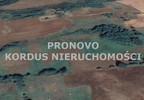 Działka na sprzedaż, Łabędzie, 78000 m² | Morizon.pl | 7542 nr5