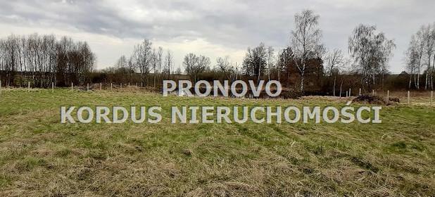Działka na sprzedaż 4593 m² Drawski Ostrowice Siecino - zdjęcie 3