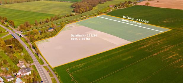 Działka na sprzedaż 84636 m² Elbląski (Pow.) Rychliki (Gm.) Rychliki - zdjęcie 3